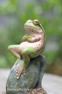 frog pondering